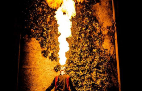 Spectacle de feu et de pyrotechnie, Labo M Arts / © Didier Jacquet